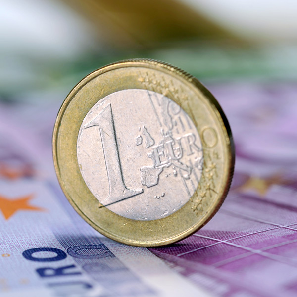 A strong year for the Euro?