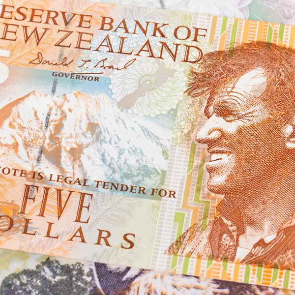 Concerns for New Zealand Economy