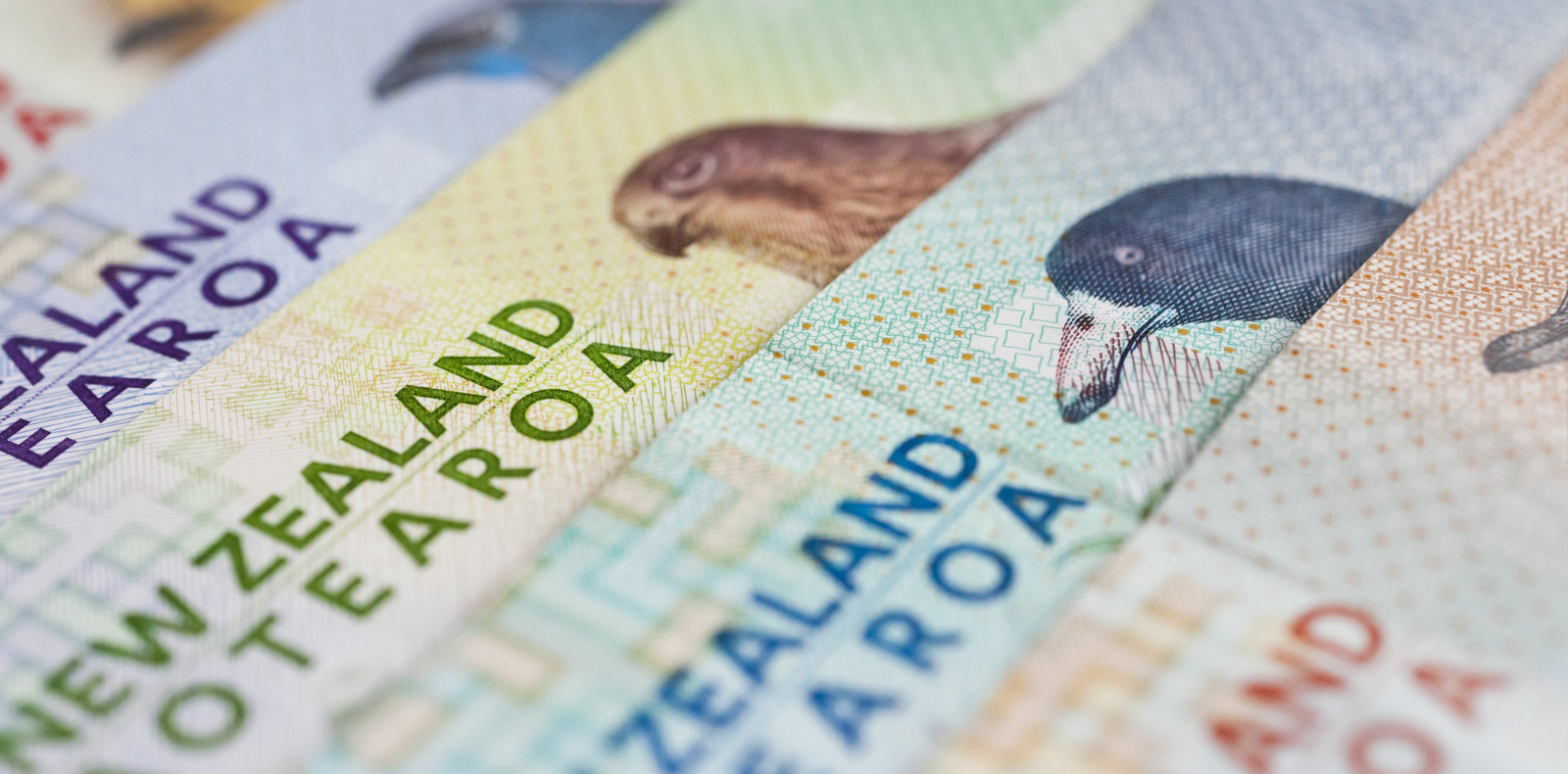 NZD strengthened by EU talks