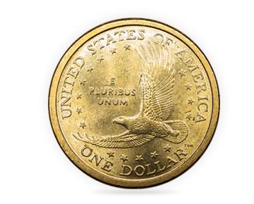Buying US Dollars - USD